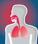 Cartoon of human with red respiratory tract