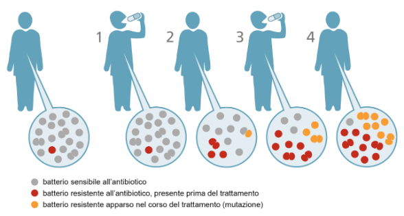 Risultati immagini per antibiotici resistenza